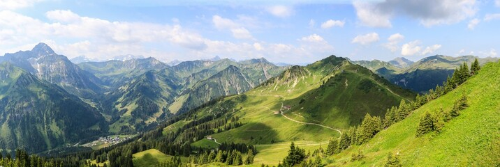 Fotobehang Alpen fellhorn