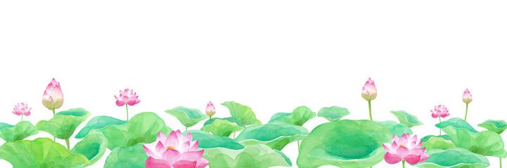 蓮の花の池のパノラマ 水彩イラスト