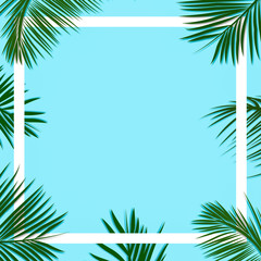 Palm leaves decorated on a soft pastel blue color background