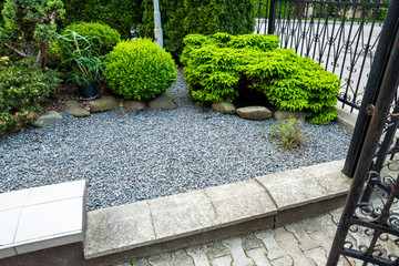 evergreens with gravel in the decoration of the flowerbed in landscaping Wall mural