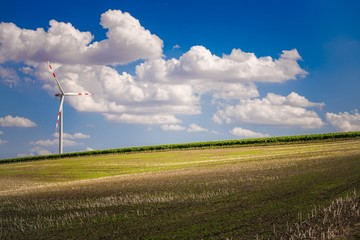 Wall Mural - Farmlands and Wind Turbine