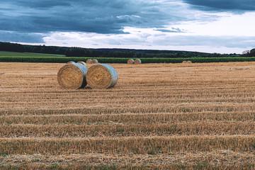 Fotoväggar - Sommer, abgeerntetes Kornfeld, Landschaft