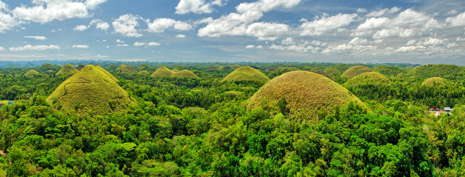 The Chocolate Hills  -  geological formation in the Bohol province of the Philippines.