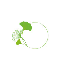 Green ginkgo leaves frame illustration