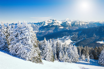 Snow-covered trees in Alps mountains with Mont Blanc ridge in the background, France. Beautiful...