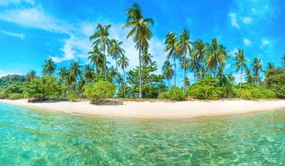 Obraz Panorama pięknej plaży na rajskiej tropikalnej wyspie z palmami kokosowymi, białym piaskiem i błękitnym morzem - fototapety do salonu