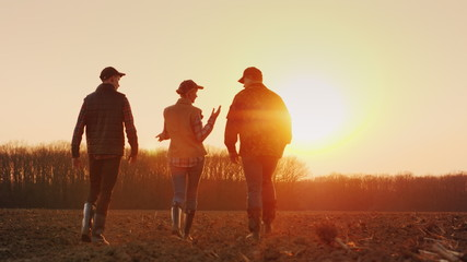 Three farmers go ahead on a plowed field at sunset. Young team of farmers Wall mural