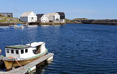 Vogelinsel Runde der Hafen
