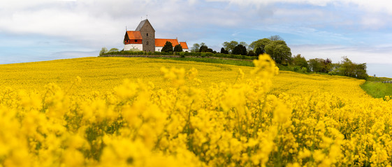 Foto op Canvas Meloen rural landscape with field and church