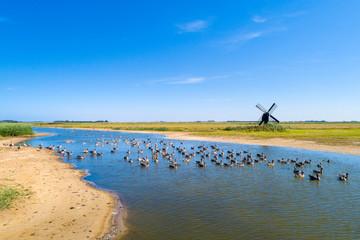 Little windmill on the island Texel