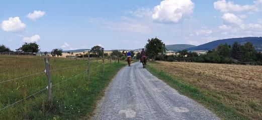 Feldweg mit Reiter auf Pferd