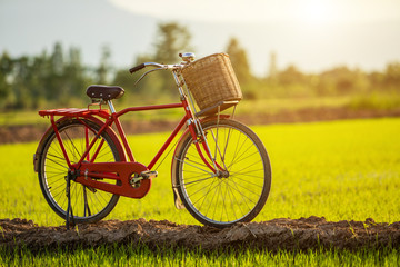 Red Japan style classic bicycle at the green field
