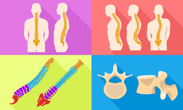 Spine icons set. Flat set of spine vector icons for web design