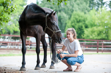 Black horse gazing away close to her owner - young teenage girl