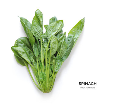 Creative layout made of spinach. Flat lay. Food concept. Spinach on white background.