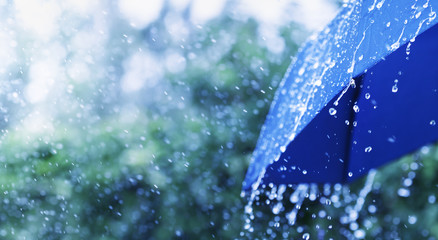 Lifestyle scene of rainy weather. Blue umbrella under rainfall. Banner format.