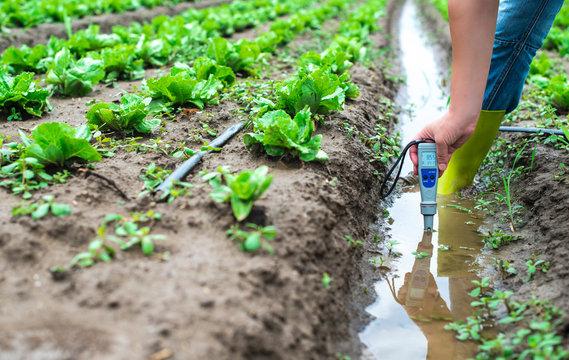 Woman mesures irrigation water with digital PH meter in watering canal.