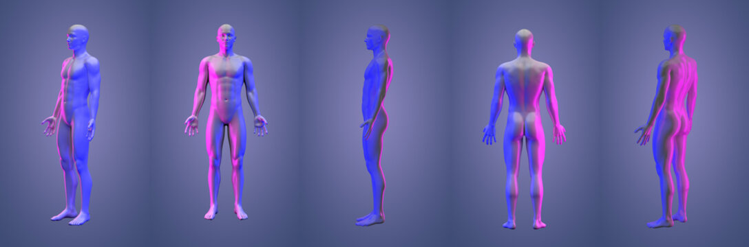 3d rendering illustration of human collection