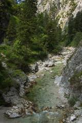 The creek Oetscherbach in Oetschergraben near to the Oetscher in Austria, Europe