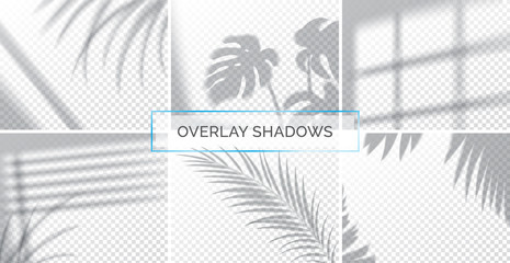 Set of shadows, overlay effects mock up, window frame and leaf of plants, natural light, vector illustration.
