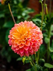 gardens of hanbury hall estate worcestershire england uk