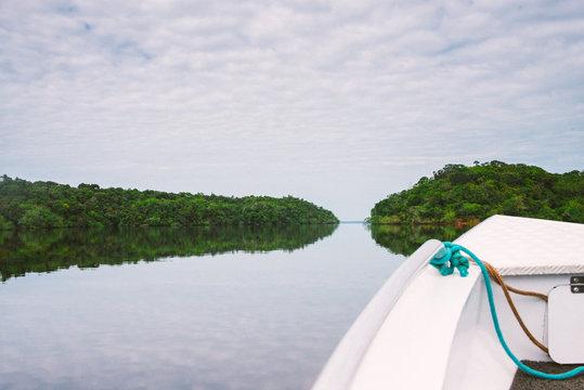 Boat tour in the Amazon Jungle, Para, Brazil