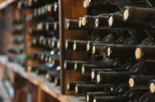 dusty wine bottles on a wooden shelf in a wine cellar