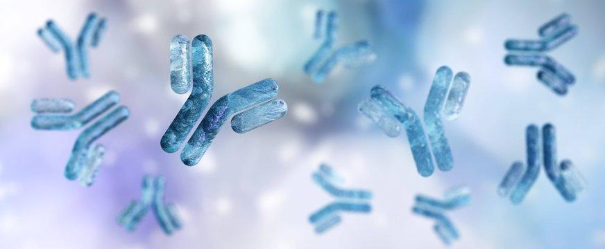 ntibody, immunoglobulin, Y-shaped protein produced mainly by plasma cells