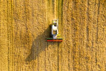 Cereal harvesting