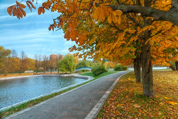 Autumn landscape of the city park with golden trees and pond with bridge.