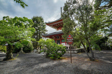 京都 知恩院 夏の景色