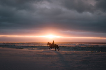Horse riding at sunset on the beach