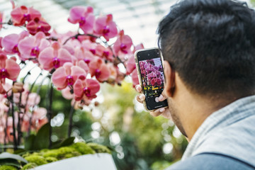 A man uses a smartphone to take pictures of flowers during the Orchid Extravaganza 2019 floral display at Gardens by the Bay in Singapore