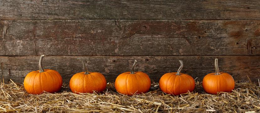 Orange halloween pumpkins on stack of hay or straw