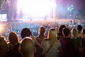 view from behind of people at the concert