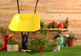 Wheelbarrow with gardening tools and flowers near wooden wall