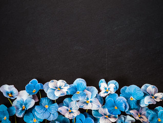 Foto op Aluminium Pansies Pansy Flower Bouquet. Blue Flowers on Dark Background. Top view, Flat lay, Copy Space