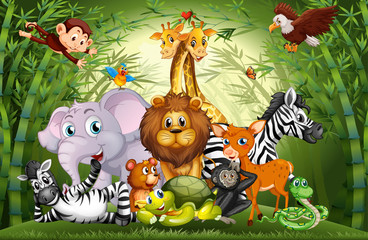 Wall Murals Kids Many cute animals in bamboo forest