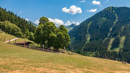 Beautiful alpine view at Aurach near Kitzbühel, Tyrol, Austria