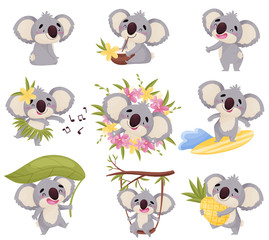 Cartoon koala in different situations. Vector illustration on white background.