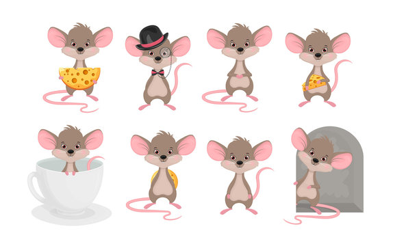 Set a cute mouse in different situations. Animals cartoon character rat vector illustration on white background