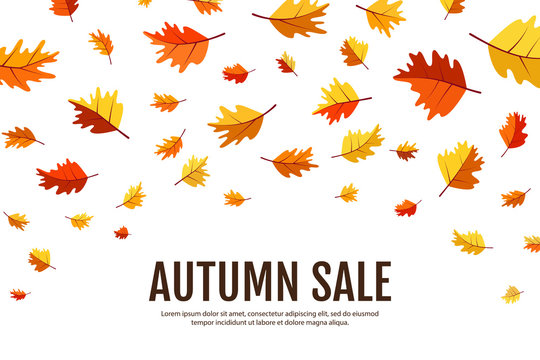 Falling leaves. Autumn concept. Sale banner. Flat style. Objects isolated on a white background. Elements for design business cards, invitations, gift cards, flyers and brochures.