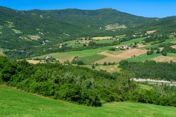Road to Prato Barbieri, landscape of Appennino