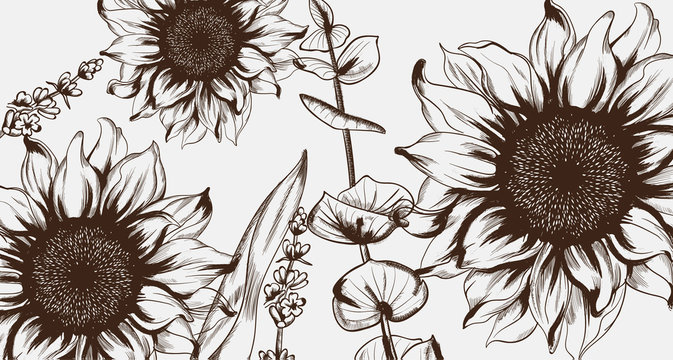Sunflowers line art Vector. Hand drawn decor texture vintage styles