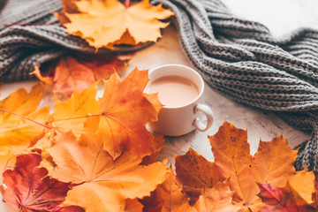 Wall Mural - Autumn home cozy composition a cup of coffee with maple leaves.Selective soft focus