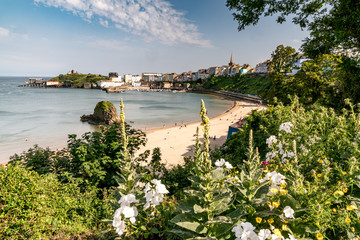 Tenby Harbour, Dyfed Wales