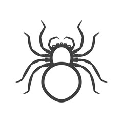 White spider icon. Vector on a white background