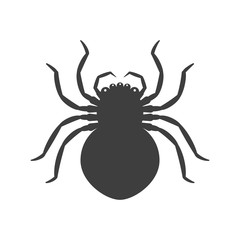 Icon absolutely black spider. Vector on a white background