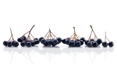 Fresh Aronia Berries