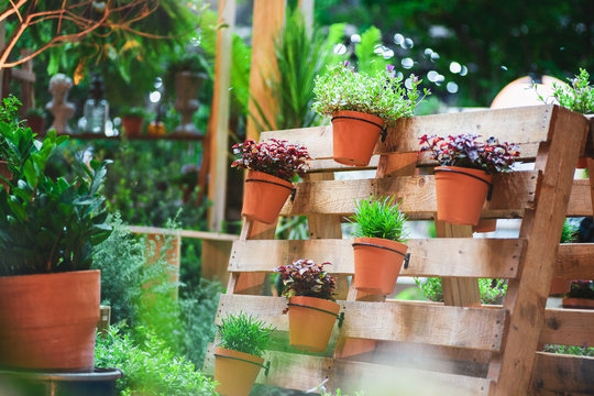 DIY recycled wooden pallet for flower pots. Storage industrial pallet used in gardening for a wall decoration as a shelf for flowerpots. Garden with planters made of recycled wooden pallets